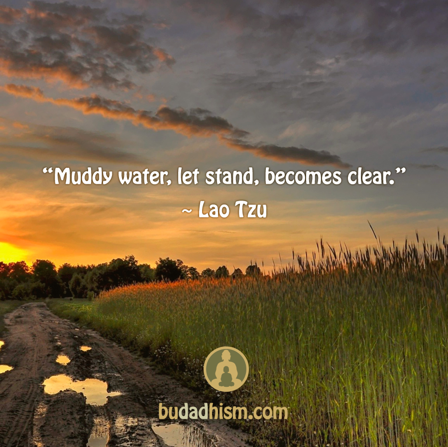 Muddy water, let stand, becomes clear.